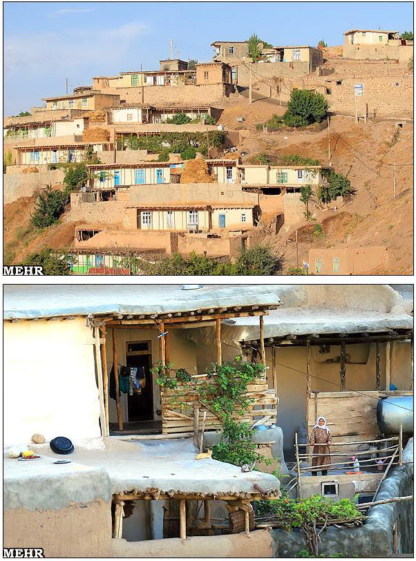 مراکز عکس رنگی رحم